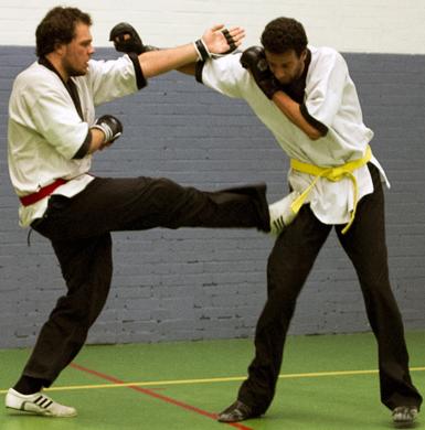 Vechtsport Vlaardingen
